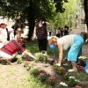 kaminskiego_piknik_24