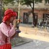 piknik_kaminskiego17-09-2011_021