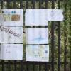 piknik_kaminskiego17-09-2011_039